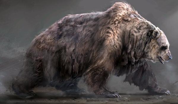 Фото: Короткомордый медведь