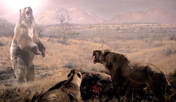 Фото: Короткомордый пещерный медведь