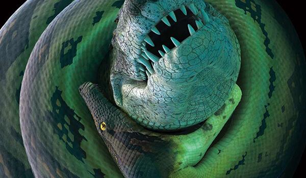 Фото: Змея титанобоа