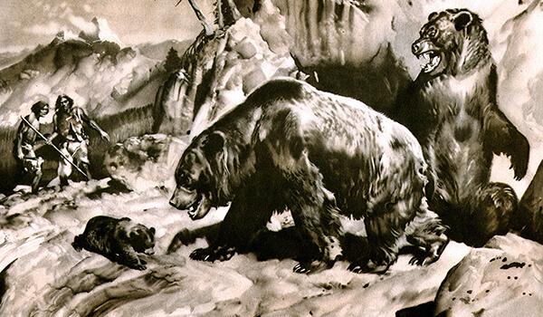 Фото: Как выглядит пещерный медведь