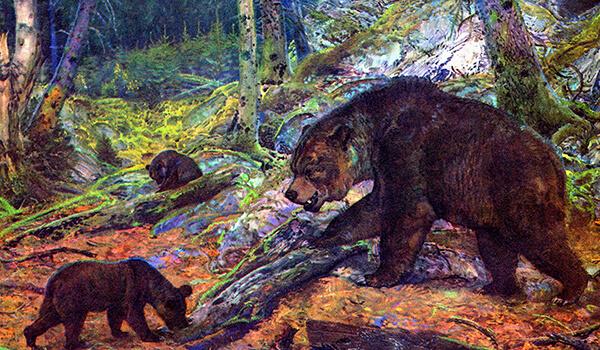 Фото: Огромный пещерный медведь