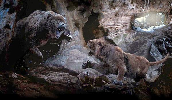 Фото: Пещерный медведь
